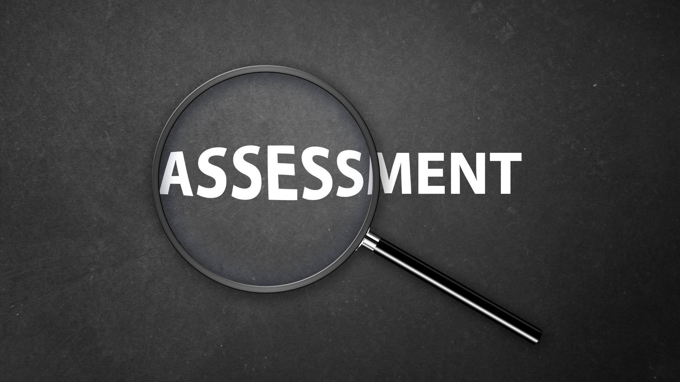 faceless-assessment AKSSAI ProjExel